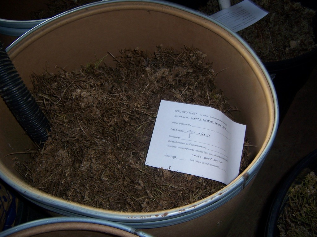 Barrel of prairie seeds