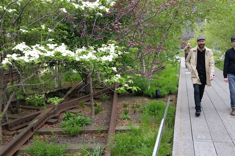 The High Line: Wild in the City
