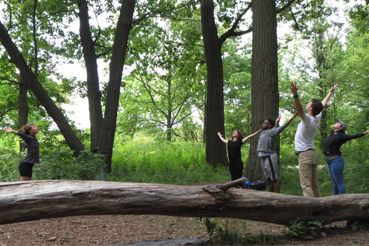 Dancing With Trees, Interviewing Flowers: The Performance Ecology Project