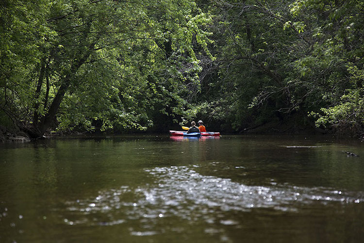 The Constant Lure of Adventure: Kayaking a Surprisingly Wild Urban River
