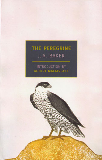 "Cover of ""The Peregrine"" by J.A Baker"