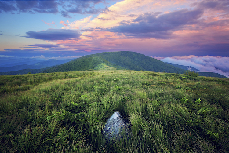 Roan Mountain, Tennessee