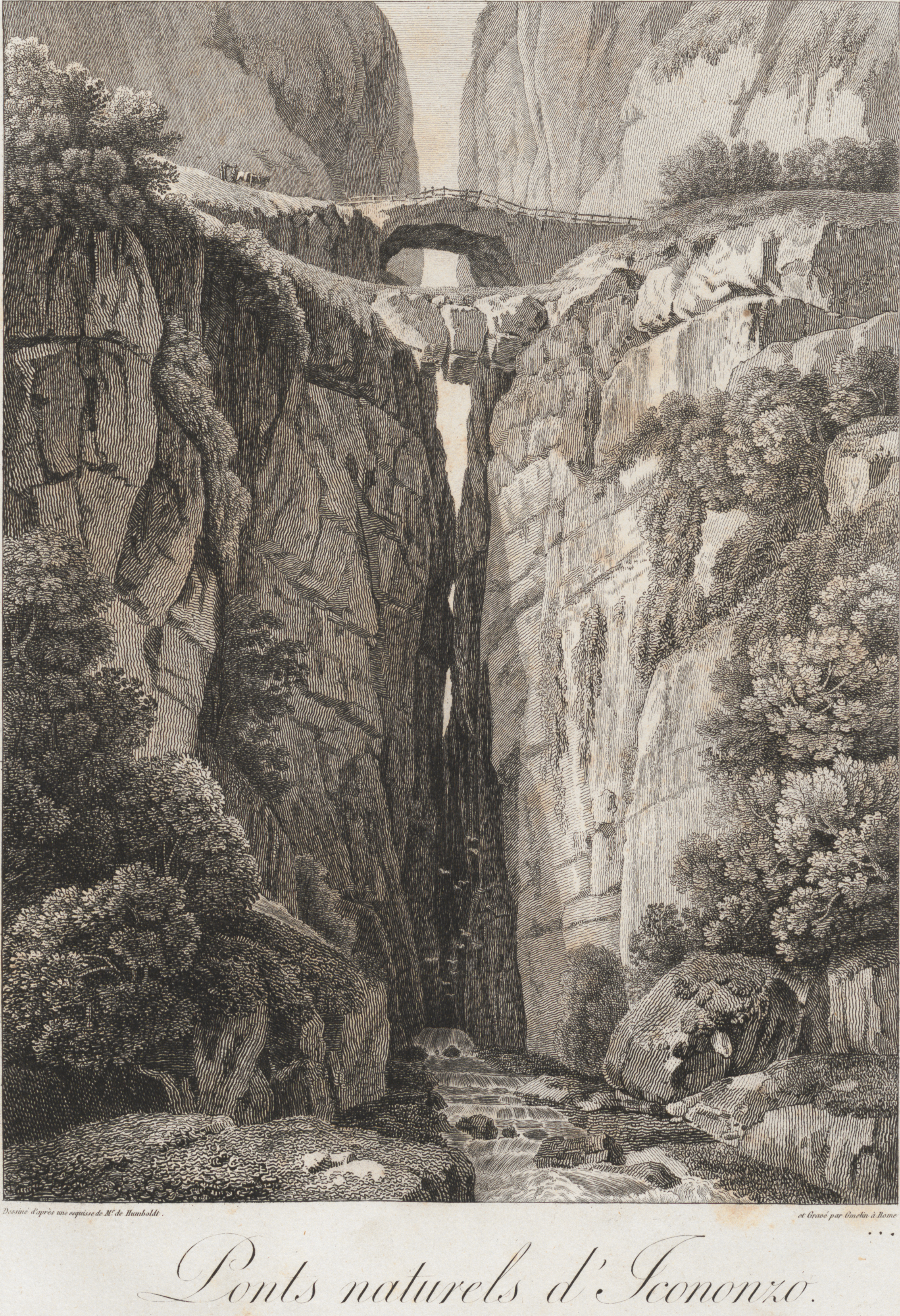 Natural Bridges of Icononzo. Plate 4, Alexander Von Humboldt, Vues des Cordilleres (Paris 1810). Rare Books and Special Collections, University of South Carolina Libraries.