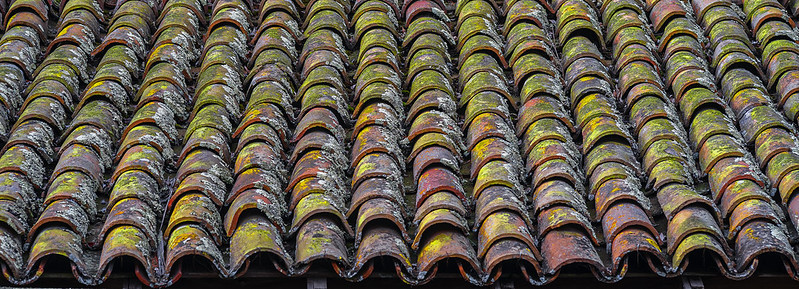Weathered Tile Roof with Lichens