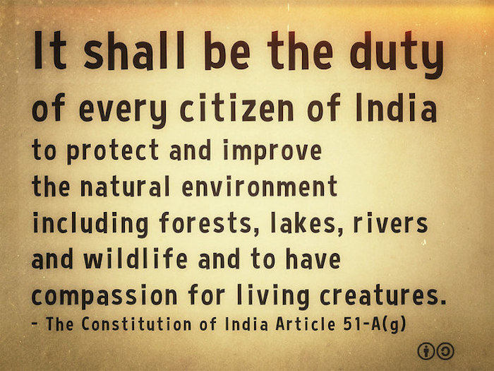 The Constitution of India Article 51-A(g)