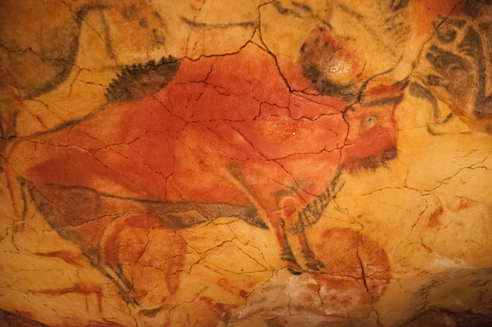 Paleolithic cave painting of local fauna