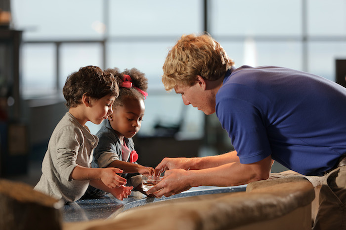 Children getting hands on experience at the South Carolina Aquarium