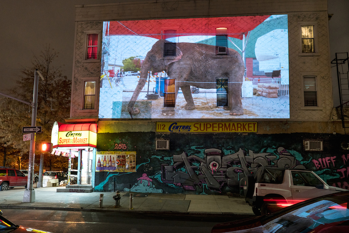 "A public projection of ""Thirty Times a Minute"" in New York"